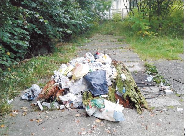 Śmieci w Konstancinie